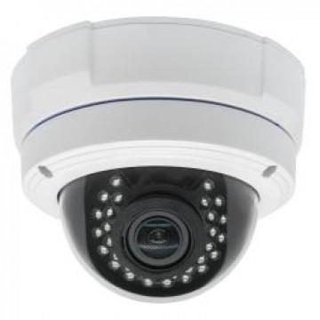 WHD300-DAT25 Big Dome Vandalproof AHD Camera